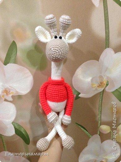 Обожаю жирафчиков =) фото 3