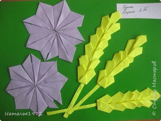 Колоски и васильки фото 1