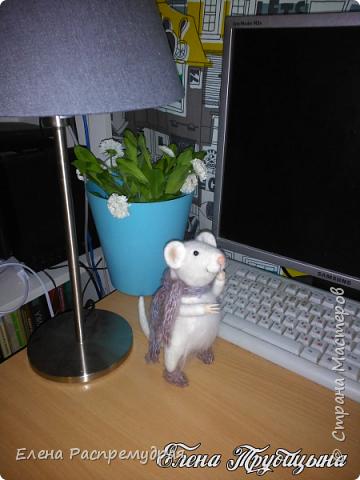 Мышка интерьерная фото 1