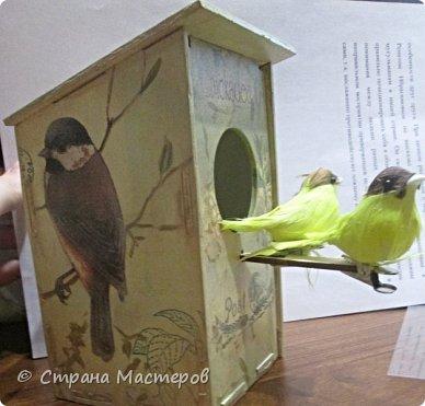 Домик для птиц из фикс прайс. фото 3