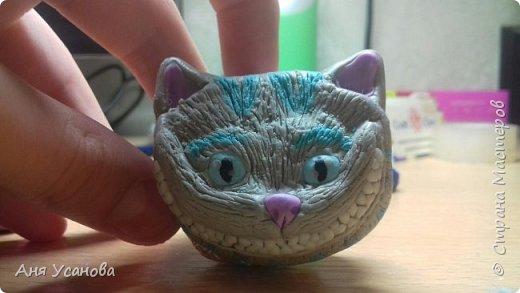 Чеширский кот фото 3