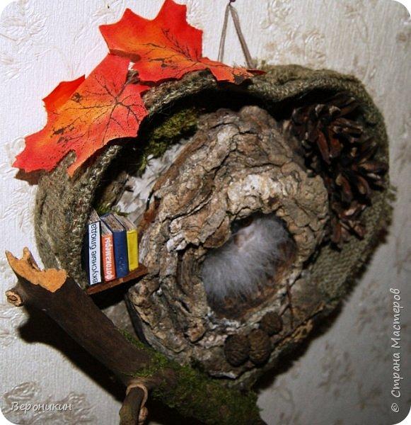 На праздник осени в садик мы с дочкой принесли такую поделку из природных материалов.  фото 4
