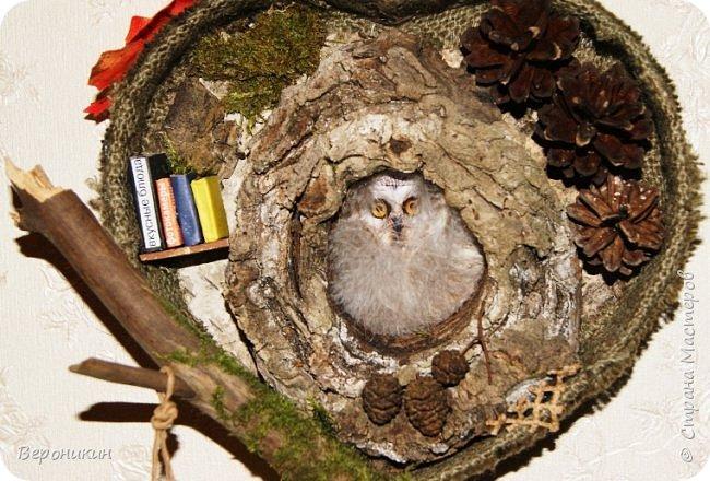 На праздник осени в садик мы с дочкой принесли такую поделку из природных материалов.  фото 8