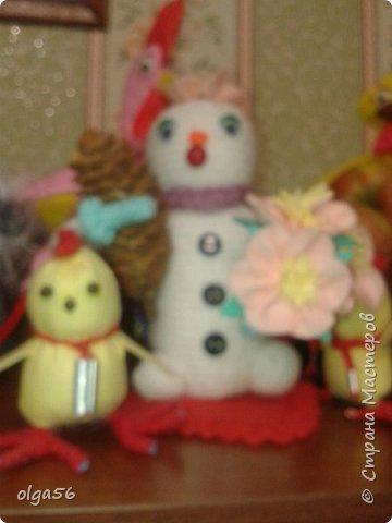 Доброе время суток. Меня зовут Шишечка.. Я еще маленькая  снежная девочка... губки бантиком и очень нежная....На головке цветочек  (не к лицу мне ведро и горшочек), вот и еловую шишку прихватила . Елки не только под Новый год  рубить  и украшать, но и пора сажать фото 5