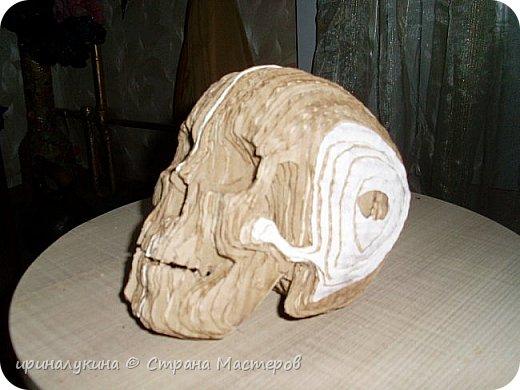 увидела череп в 3 d  в интернете.захотелось попробовать сделать ...вот что получилось фото 2