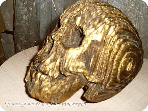 увидела череп в 3 d  в интернете.захотелось попробовать сделать ...вот что получилось фото 9
