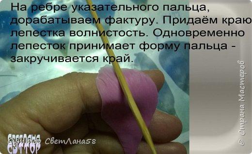 Цветок эустомы из холодного фарфора без молда и каттеров фото 15