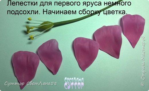 Цветок эустомы из холодного фарфора без молда и каттеров фото 19