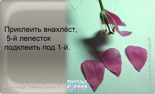 Цветок эустомы из холодного фарфора без молда и каттеров фото 20