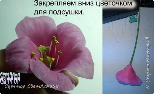 Цветок эустомы из холодного фарфора без молда и каттеров фото 22