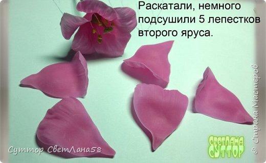 Цветок эустомы из холодного фарфора без молда и каттеров фото 23