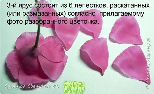Цветок эустомы из холодного фарфора без молда и каттеров фото 25