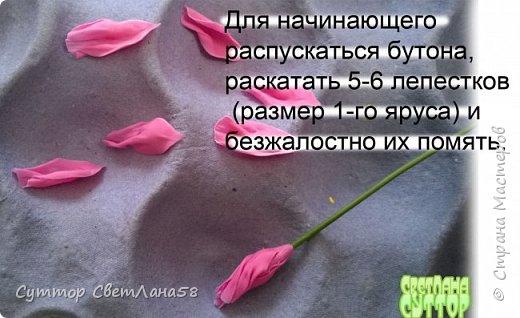 Цветок эустомы из холодного фарфора без молда и каттеров фото 28