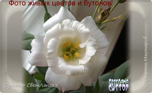 Цветок эустомы из холодного фарфора без молда и каттеров фото 6