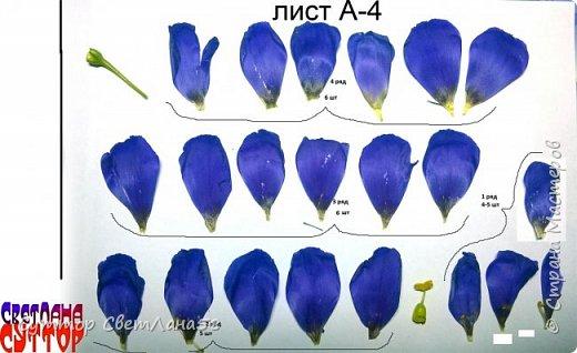 Цветок эустомы из холодного фарфора без молда и каттеров фото 9