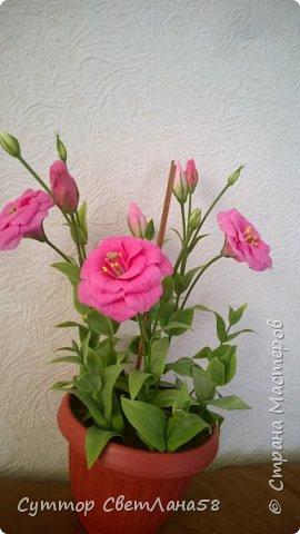 Цветок эустомы из холодного фарфора без молда и каттеров фото 31
