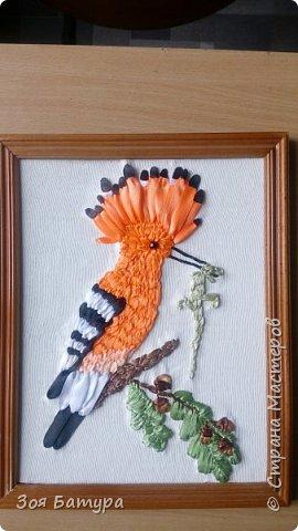 Птица года -удод