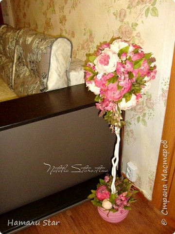 Мои любимые пионы! )))  фото 3