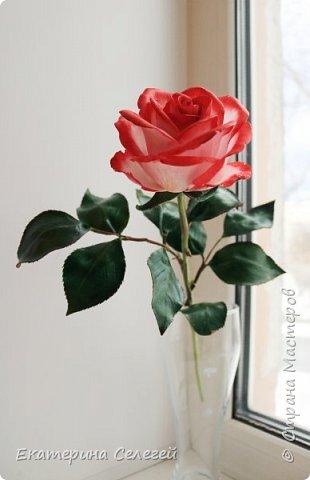 роза в смешанной технике из шелкового фоамирана и полимерной глины фото 2