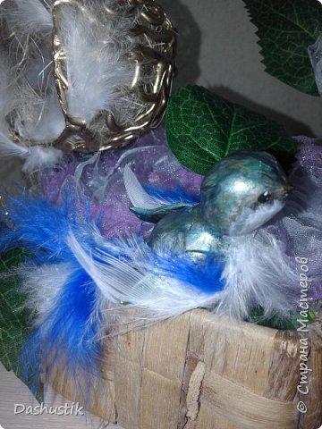 Первый пробный птиц вылетел в свое гнездышко :) фото 3