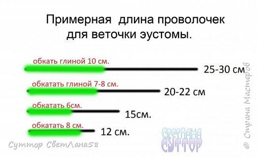 МК. Эустома из ХФ. Сборка веточки.  фото 2