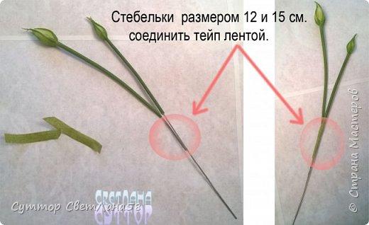 МК. Эустома из ХФ. Сборка веточки.  фото 4