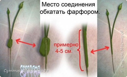 МК. Эустома из ХФ. Сборка веточки.  фото 5