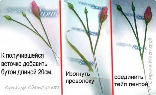 МК. Эустома из ХФ. Сборка веточки.  фото 6