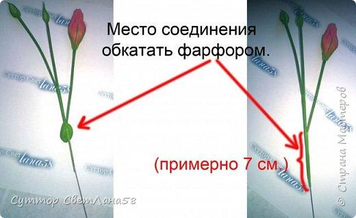 МК. Эустома из ХФ. Сборка веточки.  фото 7