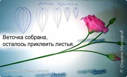 МК. Эустома из ХФ. Сборка веточки.  фото 10