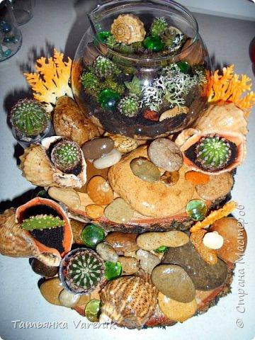 Мини-сад за стеклом или флорариум своими руками фото 6