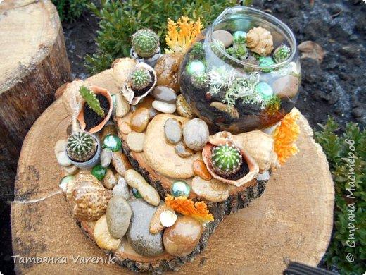 Мини-сад за стеклом или флорариум своими руками фото 10