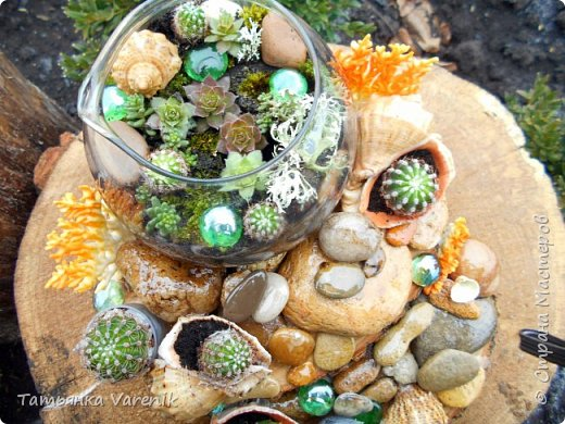 Мини-сад за стеклом или флорариум своими руками фото 3
