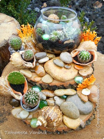 Мини-сад за стеклом или флорариум своими руками фото 1