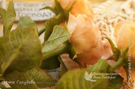 Дорогие мои,я сегодня к вам с теплыми,уютными розами!!! А ведь именно этого так хочется,когда за окном ветер и морозно) фото 11