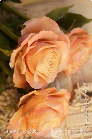 Дорогие мои,я сегодня к вам с теплыми,уютными розами!!! А ведь именно этого так хочется,когда за окном ветер и морозно) фото 5