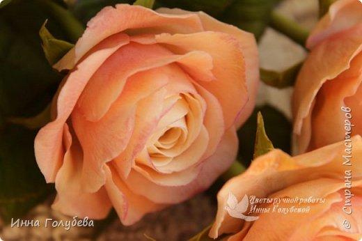 Дорогие мои,я сегодня к вам с теплыми,уютными розами!!! А ведь именно этого так хочется,когда за окном ветер и морозно) фото 3