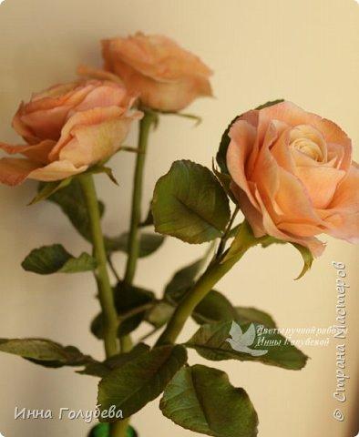 Дорогие мои,я сегодня к вам с теплыми,уютными розами!!! А ведь именно этого так хочется,когда за окном ветер и морозно) фото 7