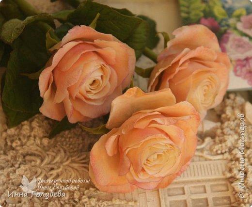 Дорогие мои,я сегодня к вам с теплыми,уютными розами!!! А ведь именно этого так хочется,когда за окном ветер и морозно) фото 10