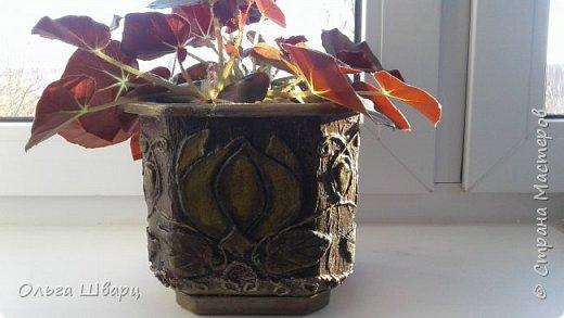 цветочные горшки фото 2