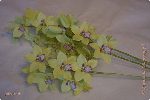 Всем приветик, я с новым букетиком! Захотелось мне слепить Цимбидиумы, но молдов подходящих не оказалось и получился новый сорт орхидеи. фото 5