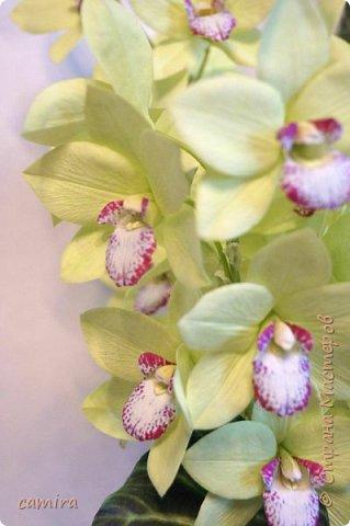 Всем приветик, я с новым букетиком! Захотелось мне слепить Цимбидиумы, но молдов подходящих не оказалось и получился новый сорт орхидеи. фото 3