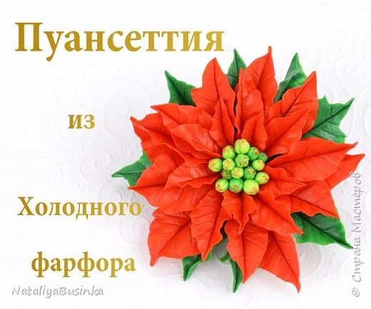 Видеоурок: лепка Пуансеттии Рождественские украшения из холодного фарфора