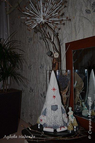Гном Ниссе фото 3