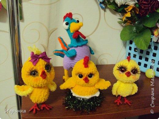 Здравствуйте все жители нашей Страны! Новогодний курятник пополняется. Правда, этот малыш не из семейства петушиных, но все-равно птыц! фото 4