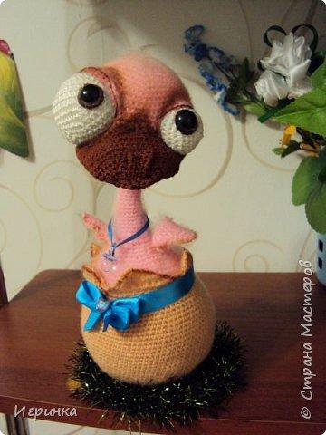 Здравствуйте все жители нашей Страны! Новогодний курятник пополняется. Правда, этот малыш не из семейства петушиных, но все-равно птыц! фото 2