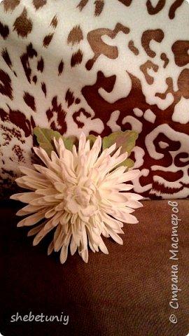 Идея создания хризантемы навеяла солнечная осенняя погода и цветущие под окном корейские хризантемы фото 1