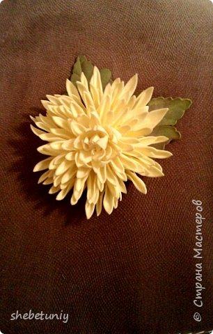 Идея создания хризантемы навеяла солнечная осенняя погода и цветущие под окном корейские хризантемы фото 2