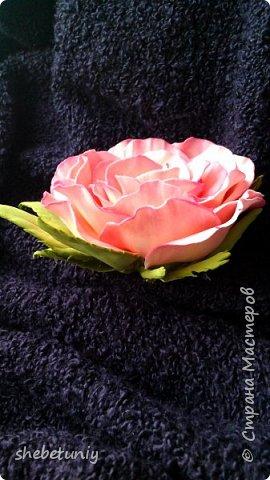Идея создания хризантемы навеяла солнечная осенняя погода и цветущие под окном корейские хризантемы фото 5