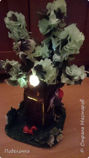 Дом- дерево для наших лесных жителей.  фото 6